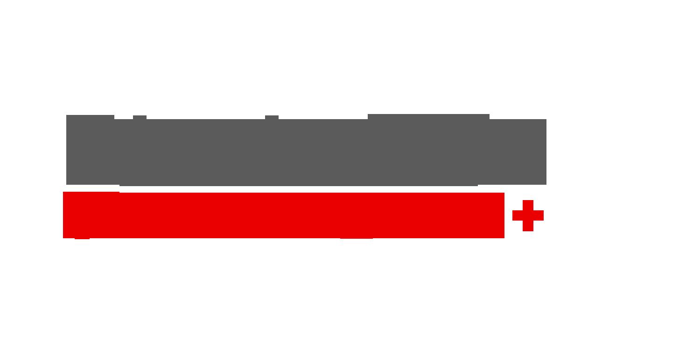 BlockchainSwitzerland_Logo_grey